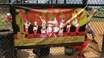 Velocity Softball Team banner