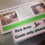 Virginia Zoo signs